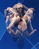 路透奥运最佳图片精选