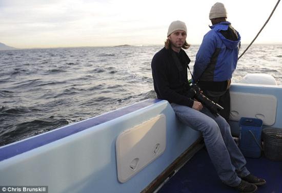 摄影师拍到大白鲨跃出水面捕食海豹瞬间
