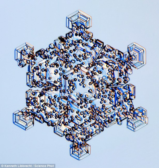 结构更为简单的雪晶(直径最多4毫米)就像枝杈,而圣诞树装饰物往往依据