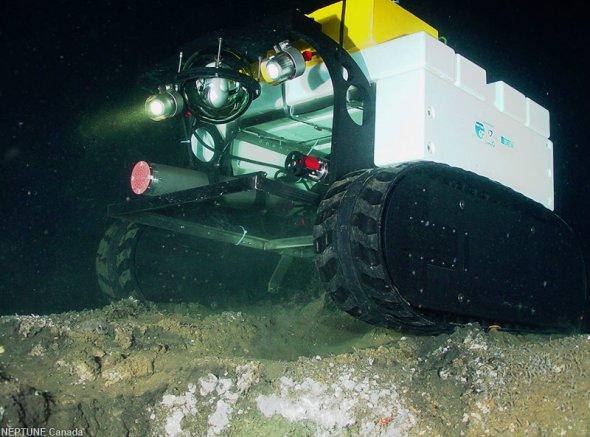 """海底爬行者:这个海底爬行者名为""""瓦利"""",是世界上第一辆依靠网络操作的深海履带车。图片中的瓦利正跨过巴克利峡谷一个气水合物出露层。瓦利由德国不莱梅国际大学海洋学家设计,用于测量海底温度、盐度、甲烷含量以及沉积物特征。巴恩斯说:""""瓦利在设计上能够穿过不同丘堤出露层以及与气水合物有关的生物群。"""""""