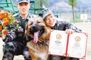 """护卫犬大队张建康抱着藏獒""""辉煌""""享受这一荣誉时刻。深圳商报记者 范国瑞 摄"""