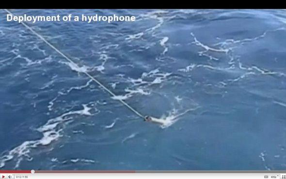 这个水下扩音器被投放到太平洋里捕捉到地震发出的巨大声响