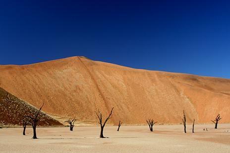 位于纳米布匹-诺言克卢福国度公园里的此雕刻片沙岩地形四周矗立着世界上最高的沙丘,父亲条约高臻350米