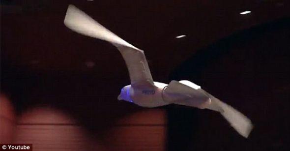 科学家已经研制出仿生无人机,拥有昆虫的眼睛,蝙蝠的耳朵,鸟的翅膀,甚至于蜜蜂般的毛发,用于探测生化武器和核武器