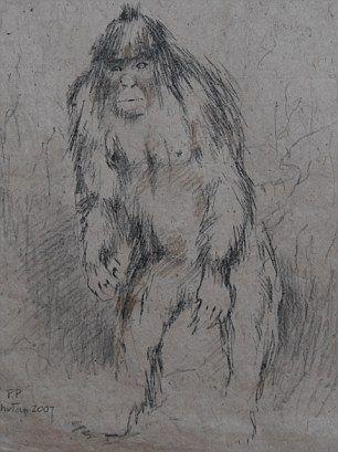 一张素描展示了雪人可能拥有的相貌。