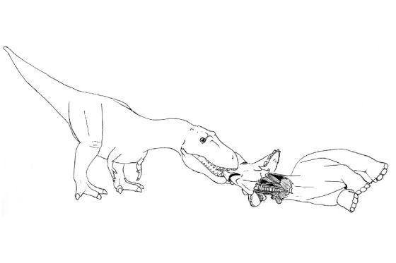 如何吃掉一头三角龙