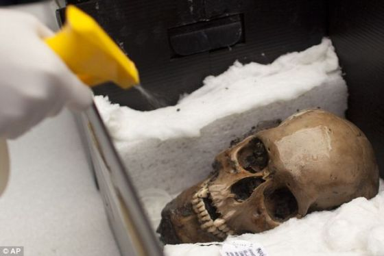 研究人员可能发现墨西哥古老文明血腥史中最大规模活人献祭地点。这个头骨是他们早期发现的文物之一。
