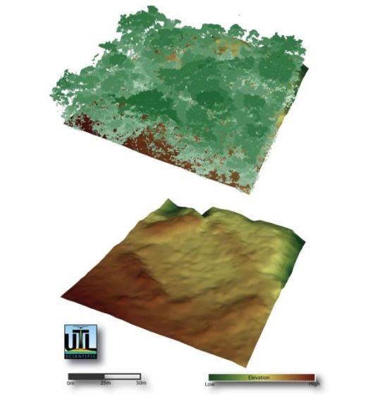 """上图为研究人员绘制的林木线,下图为""""看穿""""树荫后揭示的地面"""