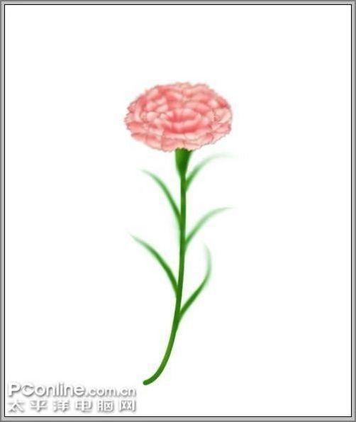 母亲节用AdobePhotoshop鼠绘一支康乃馨