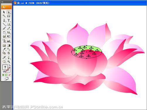 IllustratorCS3绘制矢量荷花插画