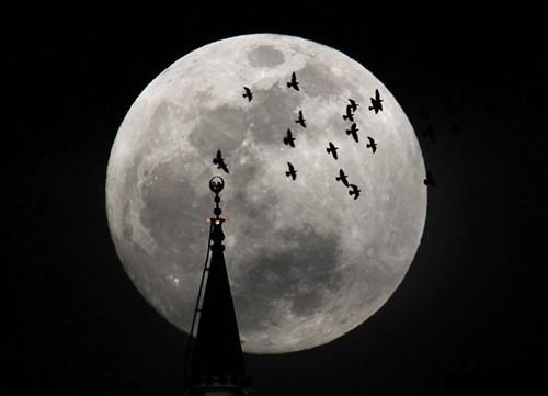 中秋之夜教你如何拍出最美丽的月亮(2)