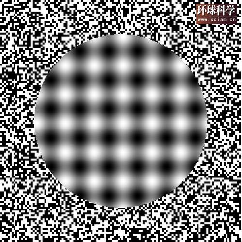 科技时代_欺骗眼睛的幻觉图形:大内错觉变体