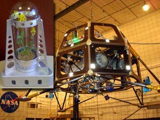 科技时代_美国私人企业要送微型月球温室上太空
