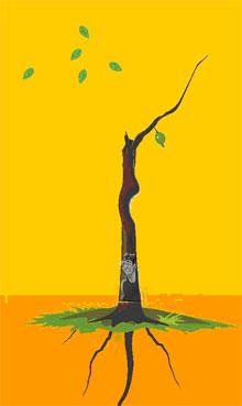 6、解释:树枝二个以内,根深,无桃花、水花、虫子,痴心重情之人