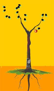 11、解释:黑灰叶变红绿色,又见主根密果者,可得上等姻缘,夫妻相助