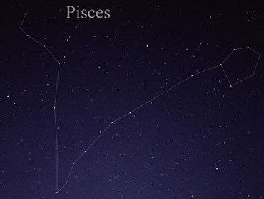 双鱼座pisces: 2月19日-3月20日