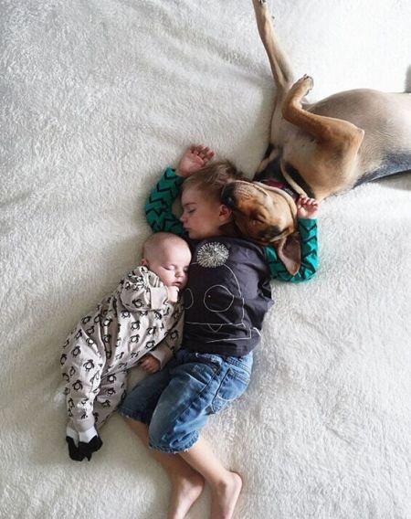 超萌!美国宝宝每天中午与宠物小狗酣睡
