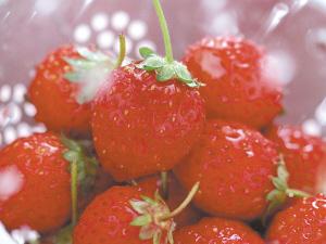 常吃草莓可预防血液病