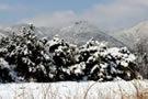 春雪后美丽的西山