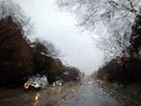 新泽西风急雨厉