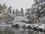 长春深秋出现雪凇奇观