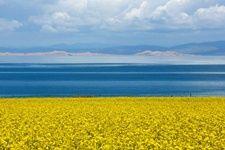 青海环湖瑰丽景色