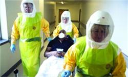 揭秘埃博拉病毒释放出的震撼效应