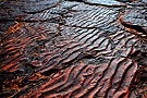 几亿年前的海底什么样
