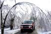 美国大雪压折树木