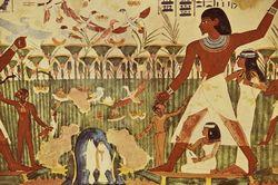 种植业稳定 利于早期文明发展