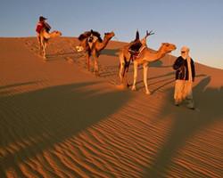 利比亚游牧民族