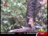 实拍男子被母亲栓山顶三年 活动范围仅3米