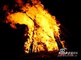 篝火晚会正式开始