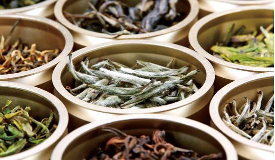 """杜国楹,中国茶行业""""吃螃蟹的人"""""""