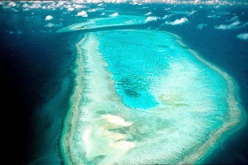 飞跃大堡礁