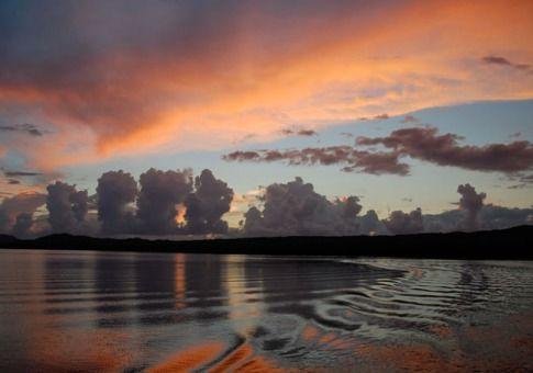 发光的蚊子湾(波多黎各别克斯岛)
