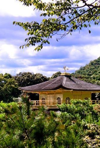 屋顶上雕刻着中国表示吉祥的凤凰,金光灿灿耀眼夺目。
