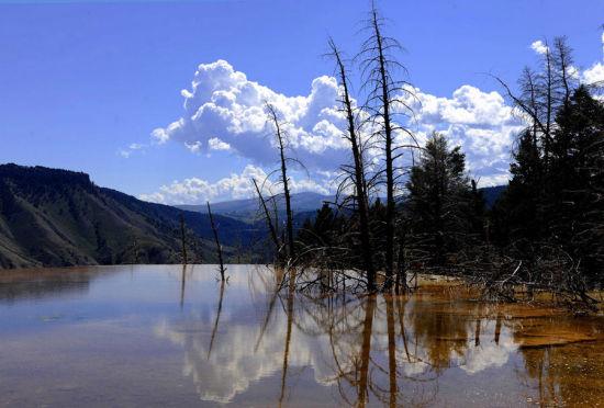 美国黄石国家公园马默斯温泉景区的景观(8月8日摄)。