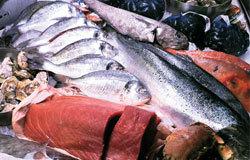在一个海港城市,不能错过它的海鲜,三文鱼、蓝青口都很棒。