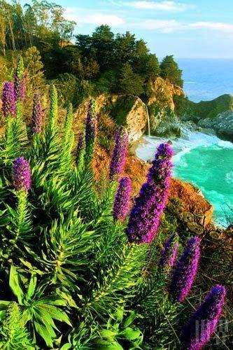 世界上陆地和海洋接触最美丽的地方