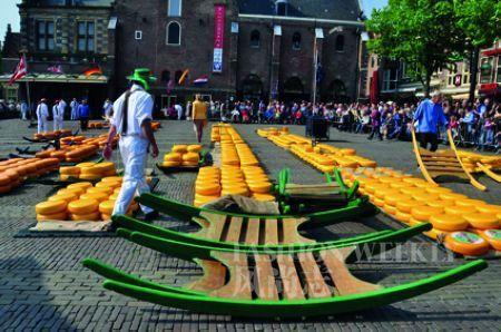 除了鲜花,荷兰还有著名的奶酪市场