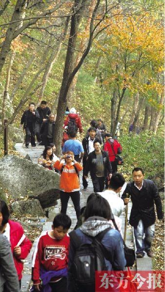 免费这7天 13万游客进嵩县