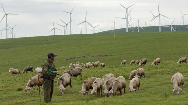 风力发电有力难出