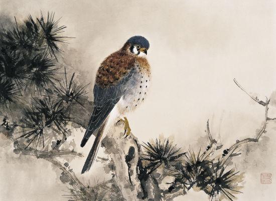 壁纸 动物 国画 鸟 鸟类 雀 550_401