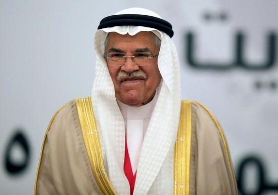 纳伊米称追求原油增产是在糟蹋时间