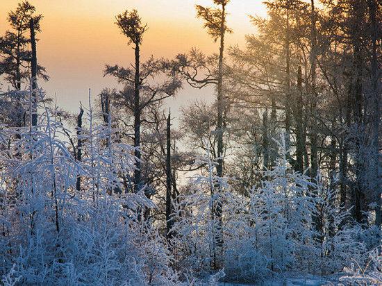 推荐景点:呼伦湖、贝尔湖、大兴安岭、满洲里、莫尔道嘎国家森林公园等。