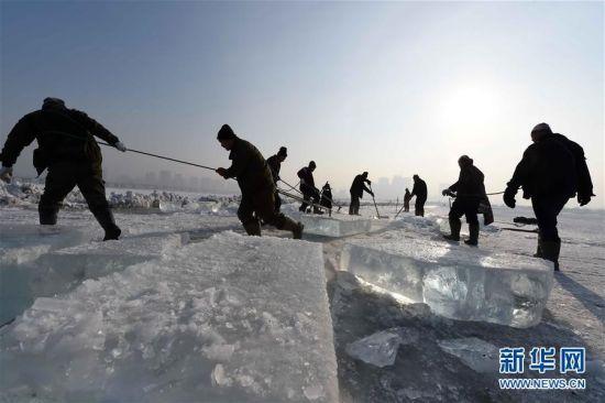 """又是一年冰雪季,广袤的黑龙江大地上各种形式的冰雪活动先后拉开序幕。曾被不少当地人""""抱怨""""的寒冰冻雪正变成炙手可热的旅游资源。新华社记者王建威摄"""