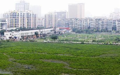 武汉城区50年来近百个湖泊被填占消失(组图)