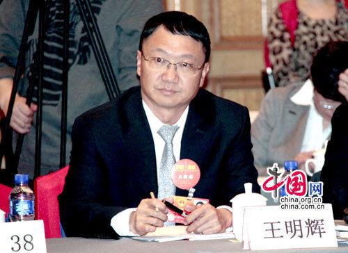 全国人大代表、云南白药控股有限公司总裁王明辉。中国网记者 姚毅婧 摄