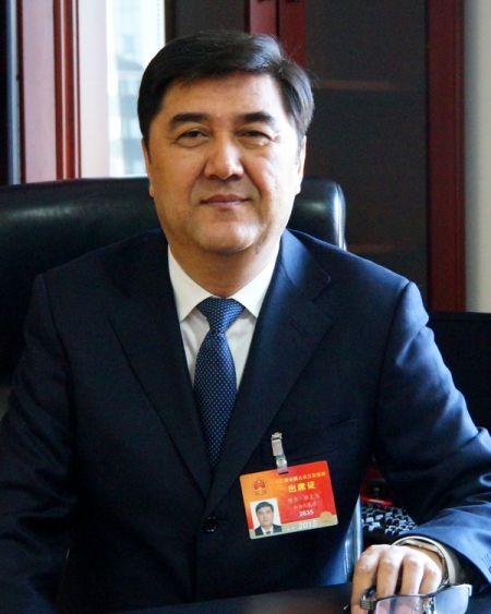 图为全国人大代表、国家发展改革委副主任、国家能源局局长努尔・白克力。